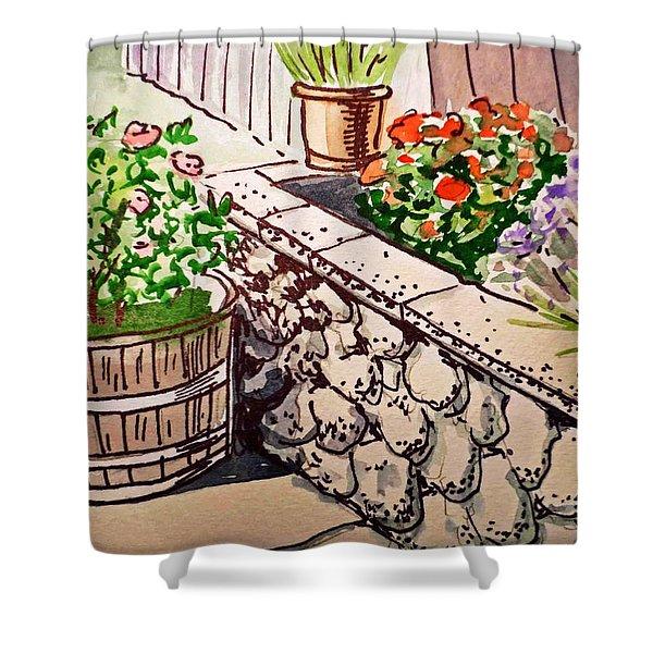 Backyard Sketchbook Project Down My Street Shower Curtain by Irina Sztukowski