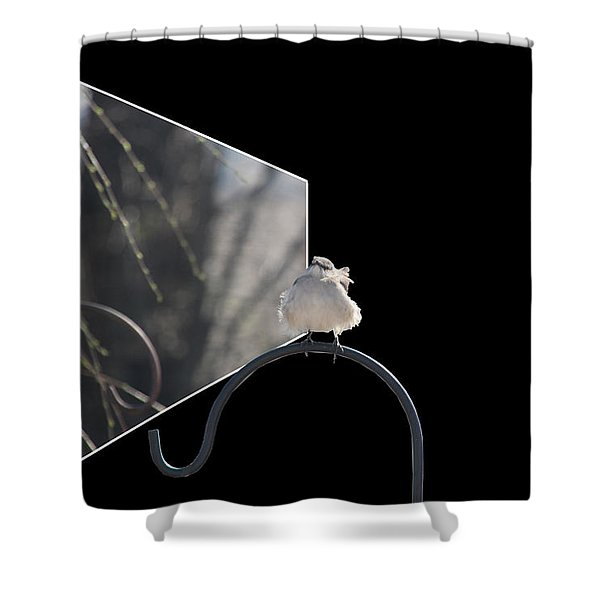 Bad Feather Day Shower Curtain by EricaMaxine  Price