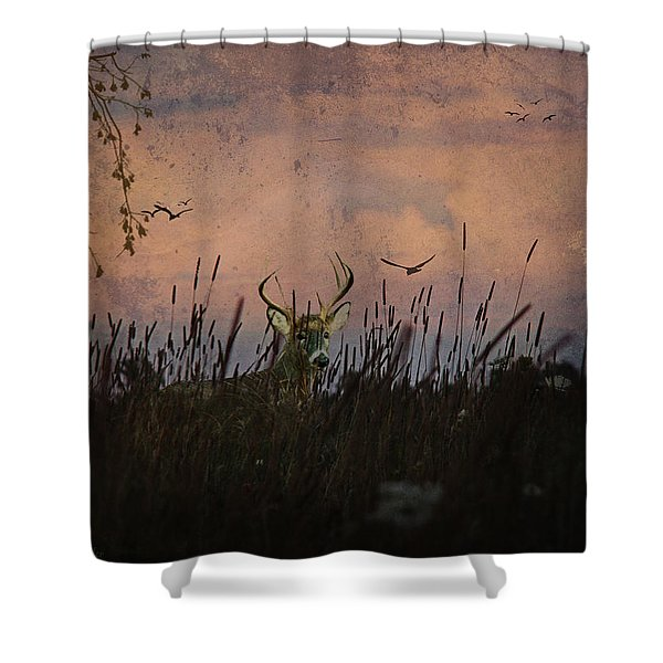 Bedding Down For Evening Shower Curtain by Lianne Schneider