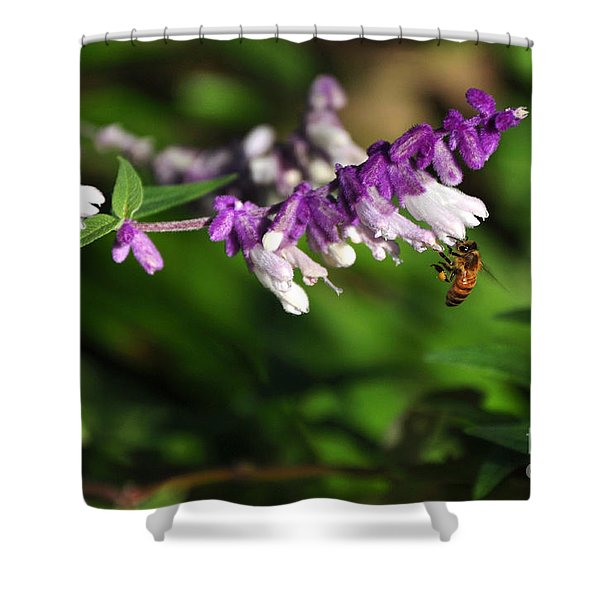 Bee On Flower Shower Curtain by Kaye Menner
