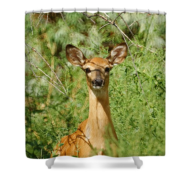 Being Watched Shower Curtain by Ernie Echols