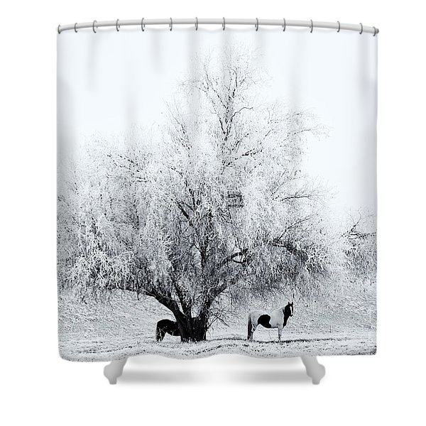 Beneath a Frosty Canopy Shower Curtain by Mike  Dawson