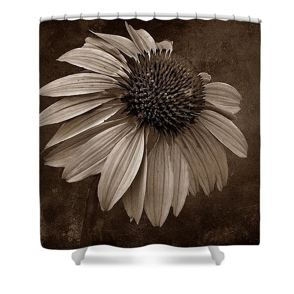 Bittersweet Memories - S Shower Curtain by David Dehner