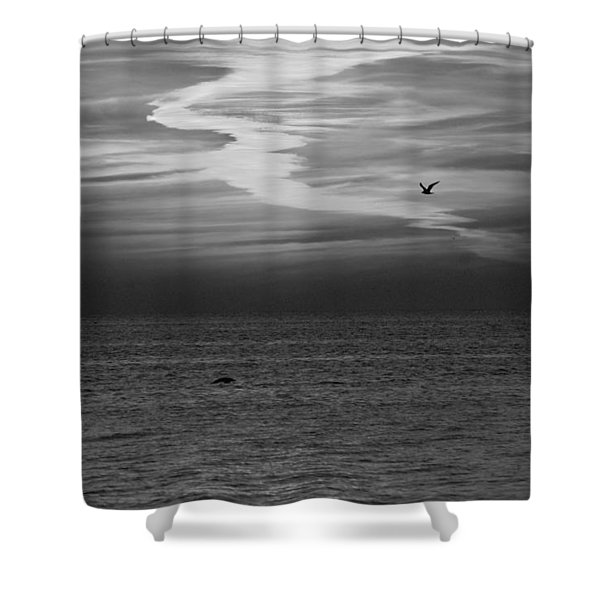 Black and White Sunset Shower Curtain by Aimee L Maher Photography and Art