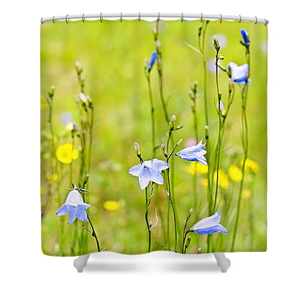 Blue harebells wildflowers Shower Curtain by Elena Elisseeva
