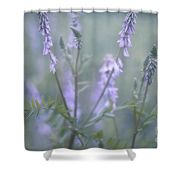 Blue Vervain Shower Curtain by Priska Wettstein