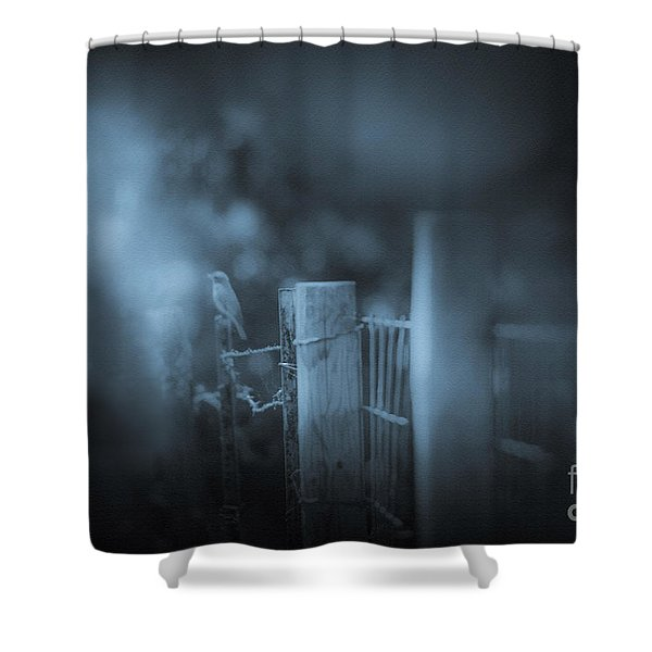 Bluebird Shower Curtain by Kim Henderson