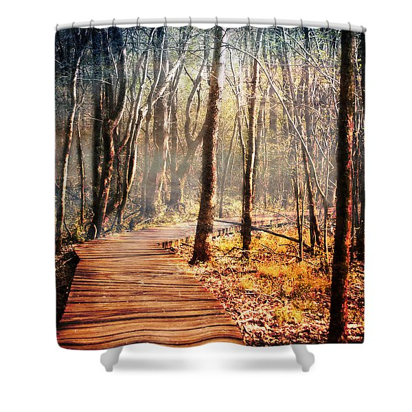 Boardwalk Shower Curtain by Jai Johnson