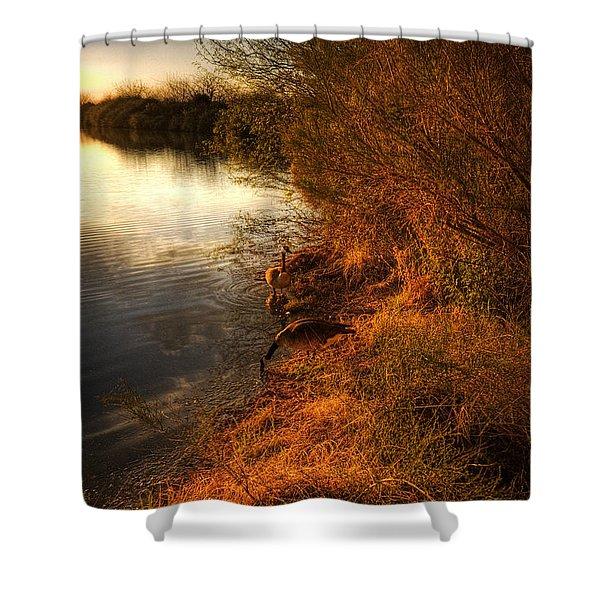 By The Evening's Golden Glow Shower Curtain by Saija  Lehtonen