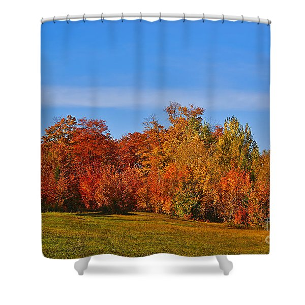 Canada in Colors Shower Curtain by Aimelle