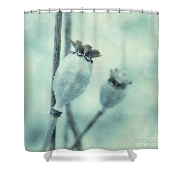 Capsule Series Shower Curtain by Priska Wettstein