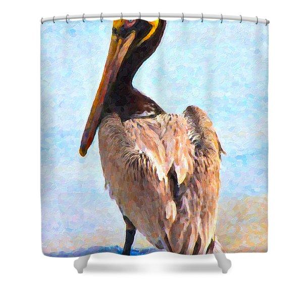Carlos Shower Curtain by Betsy C  Knapp