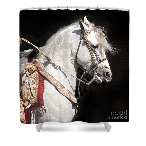 Charro Stallion Shower Curtain by Jim and Emily Bush
