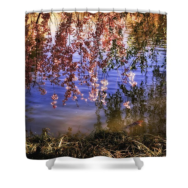 Cherry Blossoms in the Sun - New York City Shower Curtain by Vivienne Gucwa