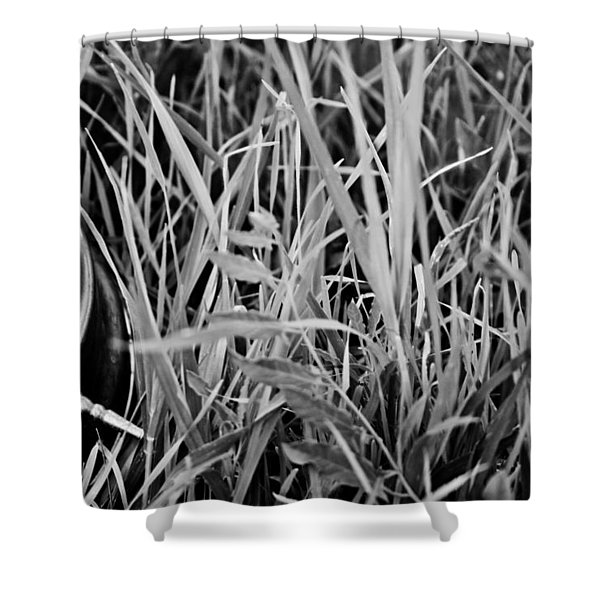 Clocks away Shower Curtain by Nomad Art And  Design