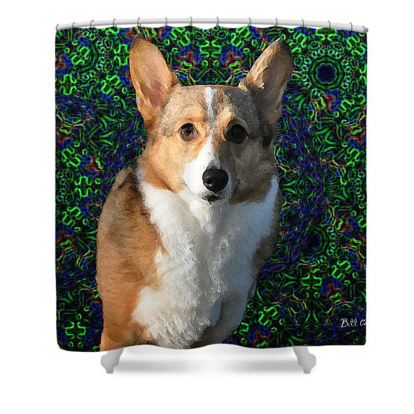 Collie Shower Curtain by Bill Cannon