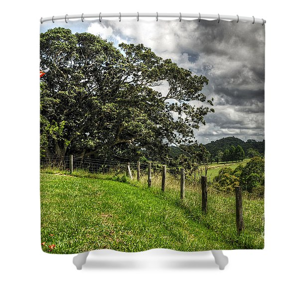 Countryside with old Fig Tree Shower Curtain by Kaye Menner