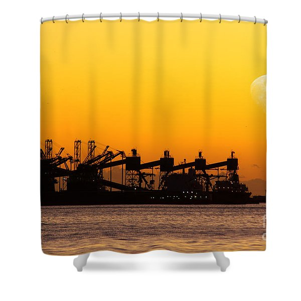 Cranes At Sunset Shower Curtain by Carlos Caetano