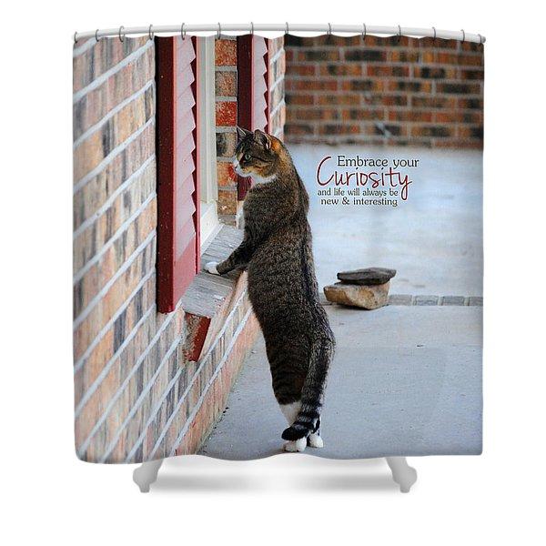CURIOSITY Inspirational Cat Photograph Shower Curtain by Jai Johnson