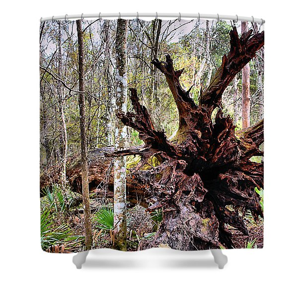 Cypress Roots Shower Curtain by Kristin Elmquist
