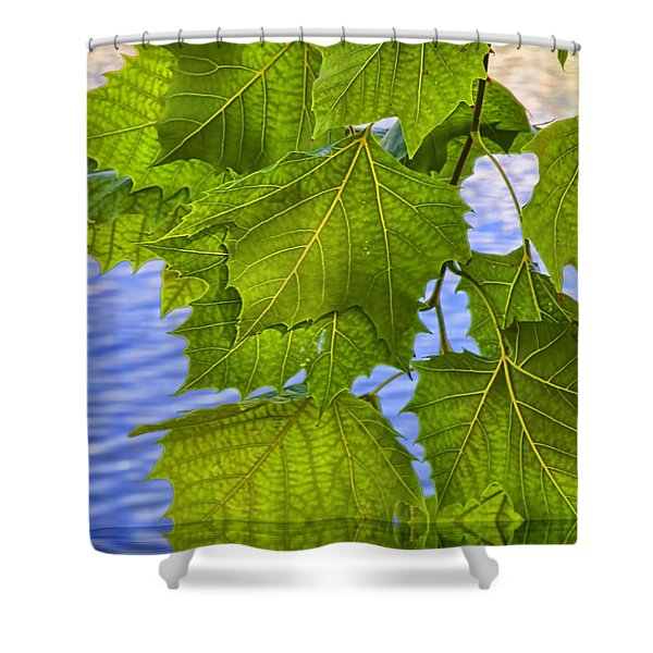 Dangling Leaves Shower Curtain by Deborah Benoit