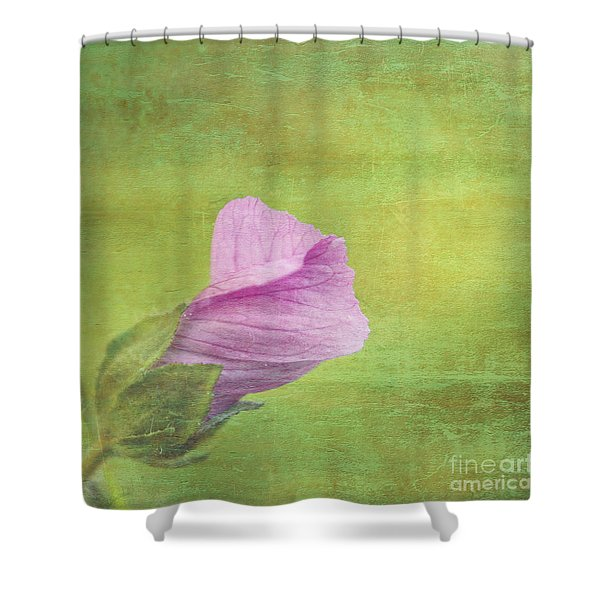 Deploiement - 01ct02b Shower Curtain by Variance Collections