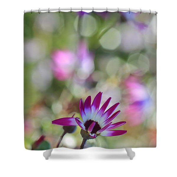 Different Shower Curtain by Heidi Smith