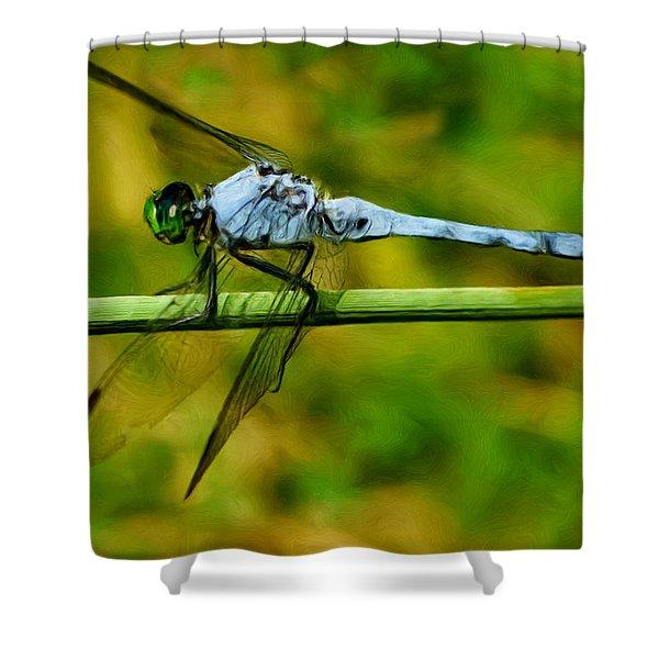 Dragonfly Shower Curtain by Jack Zulli