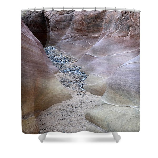 Dry Creek Bed 3 Shower Curtain by Bob Christopher