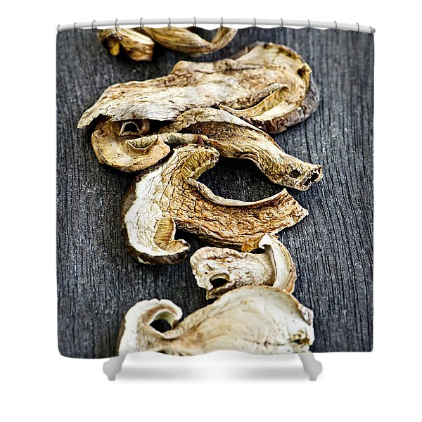 Dry porcini mushrooms Shower Curtain by Elena Elisseeva