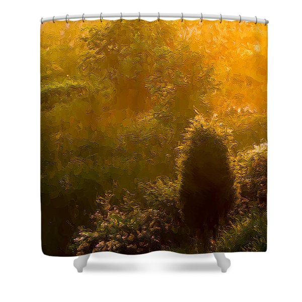 Early Gloaming Shower Curtain by Ron Jones