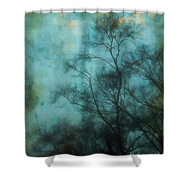 Evening Sky Shower Curtain by Judi Bagwell