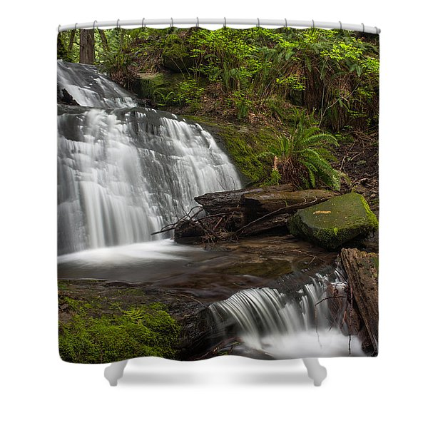 Evergreen Steps Shower Curtain by Mike Reid