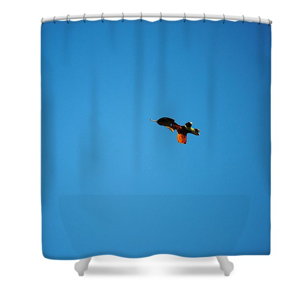 Falling Leaf Shower Curtain by Jai Johnson