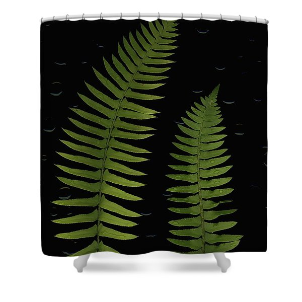 Fern Leaves With Water Droplets Shower Curtain by Deddeda