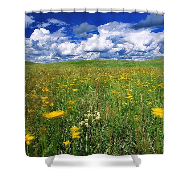 Field Of Flowers, Grasslands National Shower Curtain by Robert Postma
