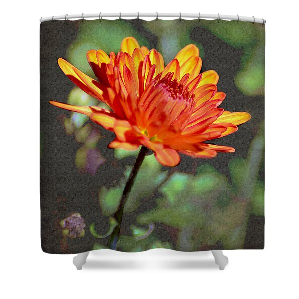 First Mum For Fall Shower Curtain by Sandi OReilly