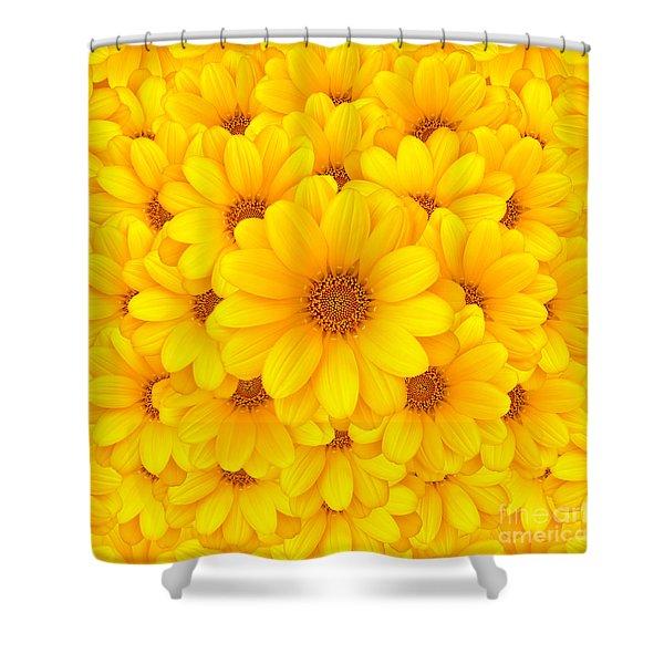 Flower background Shower Curtain by Carlos Caetano