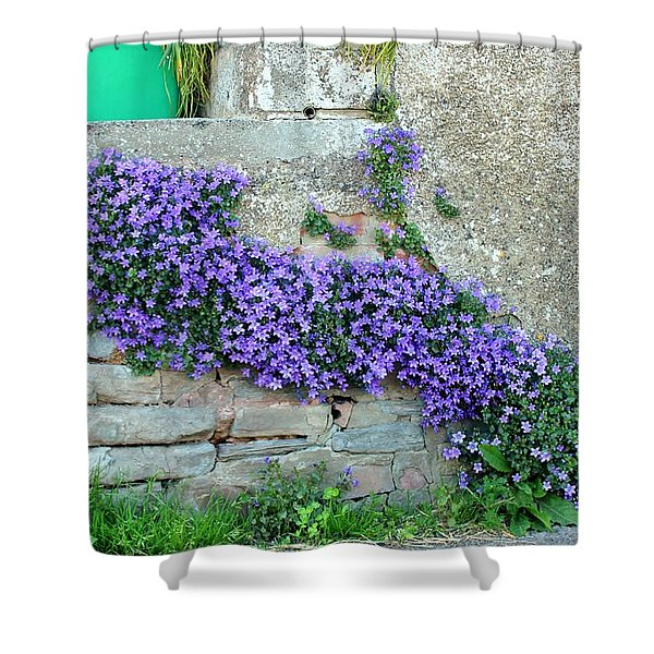 Flowered Steps Shower Curtain by Rene Triay Photography