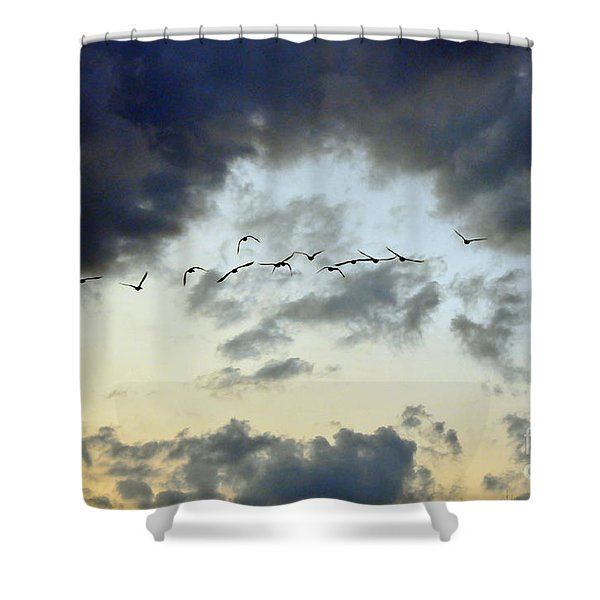 Flying South for the Winter Shower Curtain by Paul Ward
