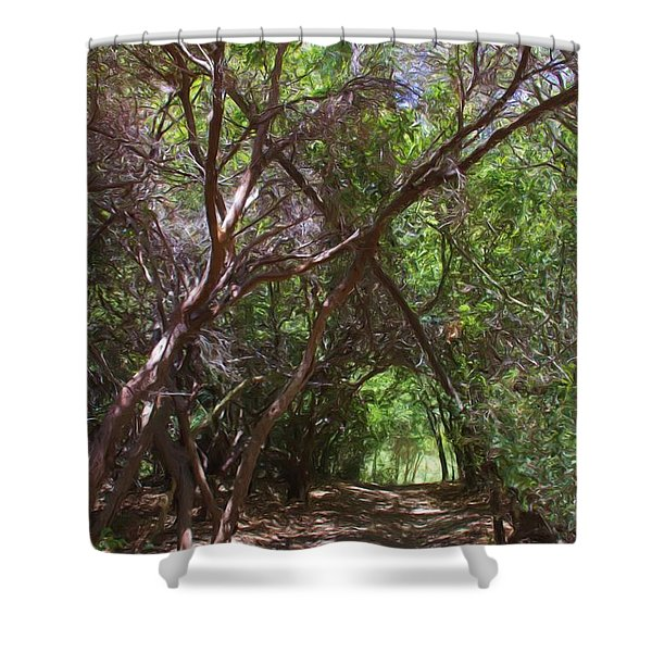 Follow Me Shower Curtain by Heidi Smith