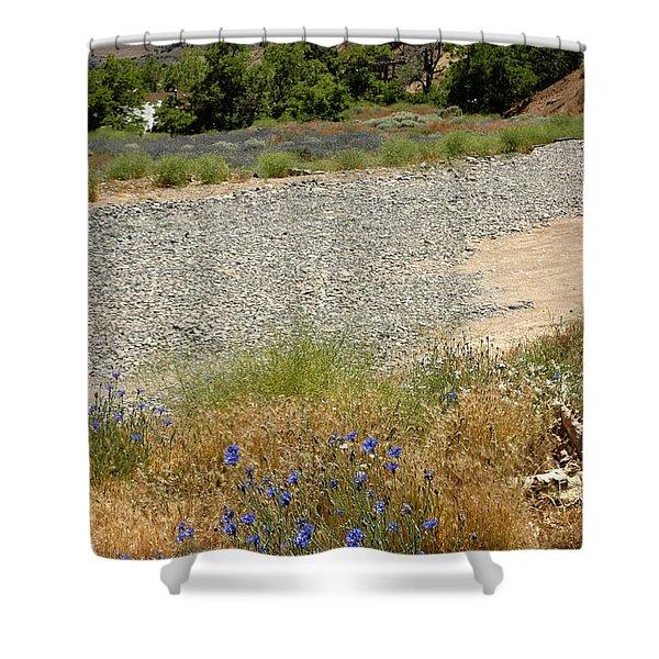 For Purple Mountain Majesties Shower Curtain by LeeAnn McLaneGoetz McLaneGoetzStudioLLCcom