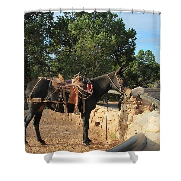 For The Ride Down Shower Curtain by Heidi Smith