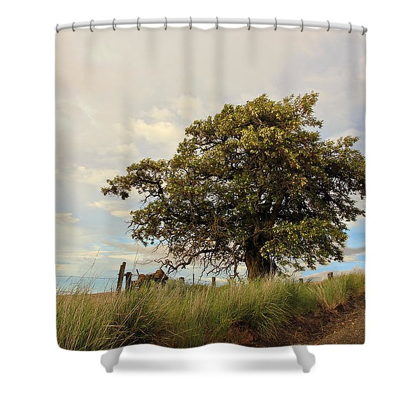 From Dusk to Dawn II Shower Curtain by Athena Mckinzie