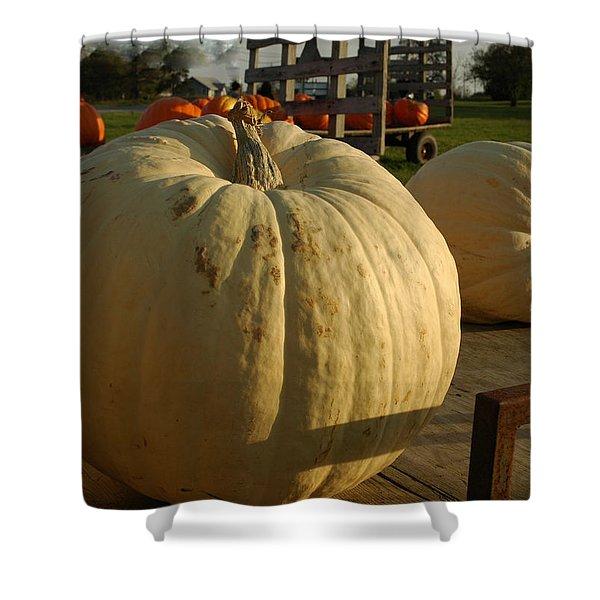 Ghost Pumpkin Shower Curtain by LeeAnn McLaneGoetz McLaneGoetzStudioLLCcom