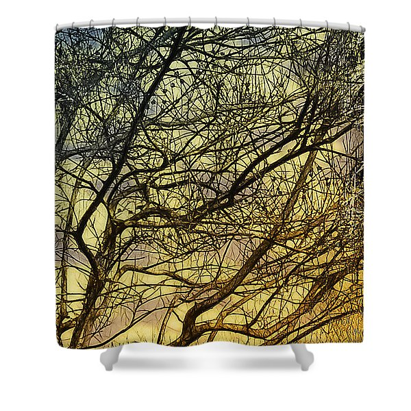 Ghosts Of Crape Myrtles Shower Curtain by Judi Bagwell