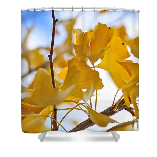 Golden Autumn Shower Curtain by Kaye Menner