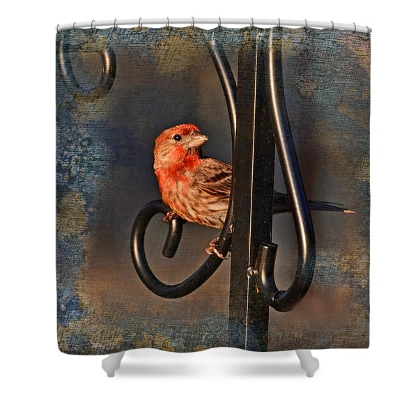 Good Moning Sunshine IIi Shower Curtain by Debbie Portwood