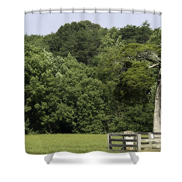 Grave of Lafayette Meeks Appomattox Virginia Shower Curtain by Teresa Mucha