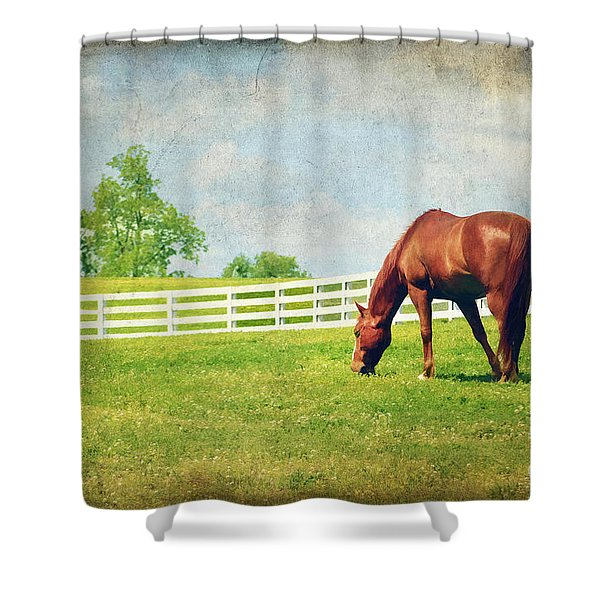 Grazing Shower Curtain by Darren Fisher